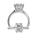 Ritani Diamond Platinum Engagement Ring Setting