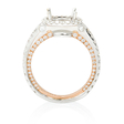 1.01ct Diamond 18k Two Tone Gold Halo Engagement Ring Setting