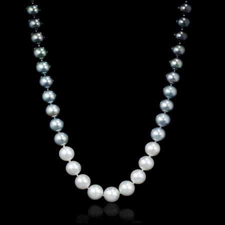 South Sea Pearl 14k White Gold Necklace