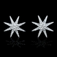 .29ct Diamond 18k White Gold Cluster Earrings