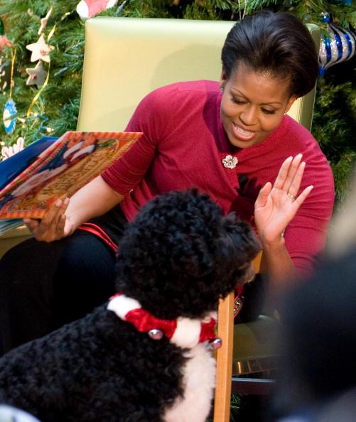 Michelle Obama S Garavelli Brooch Pin Anniversary Gift
